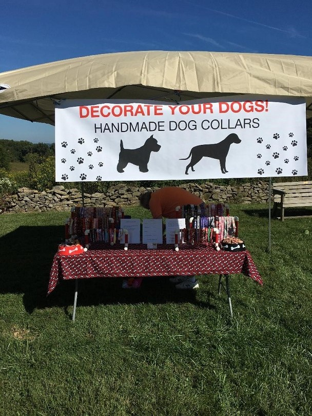 Decorate Your Dogs