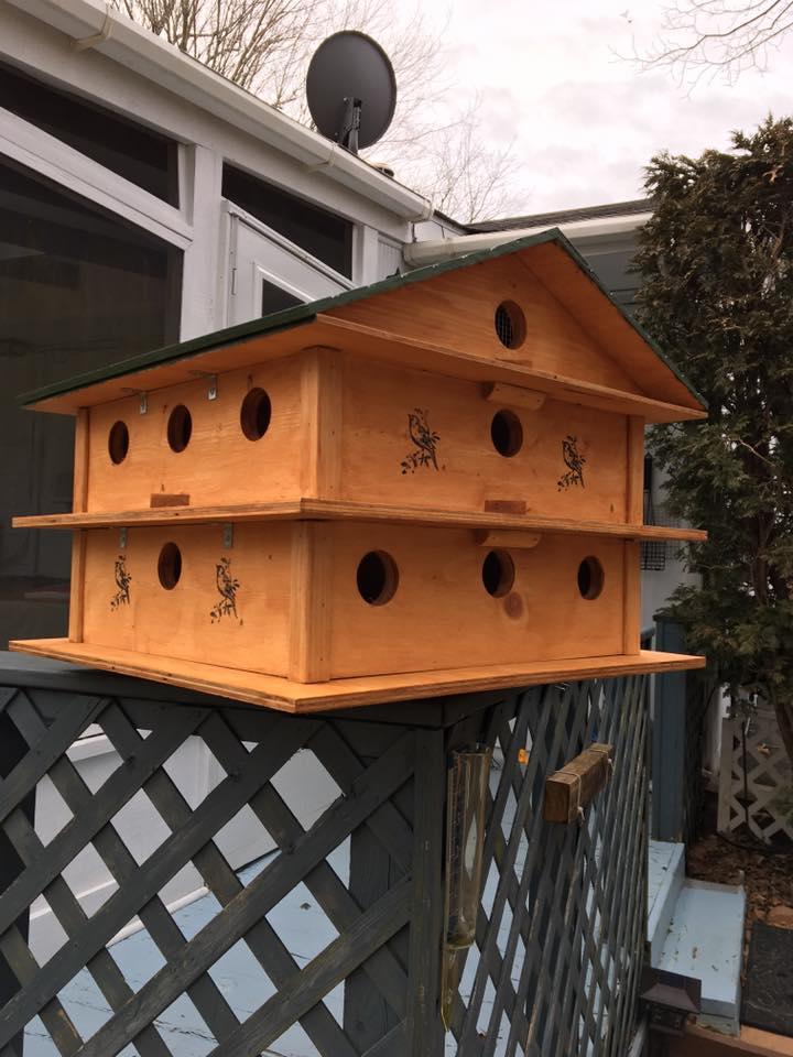 Poppy's Birdhouse and Feeders